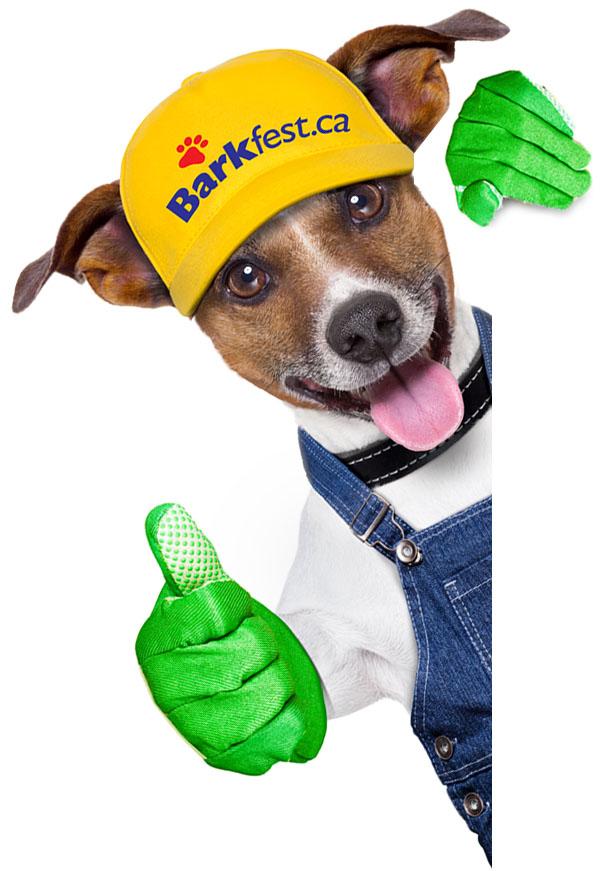 Barkfest Volunteer Dog